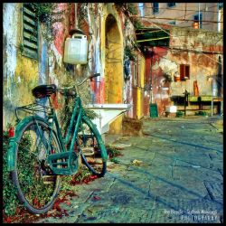 The Bicycle by Direct2Brain