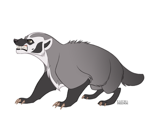 American Badger by faithandfreedom