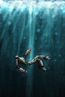 robot sinks by minced