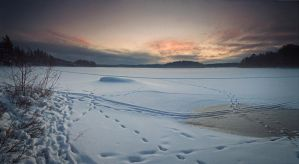 What Is Hidden In Snow... by DagHagerius