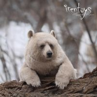 Stepan the bear [stuffed toy] by Irentoys
