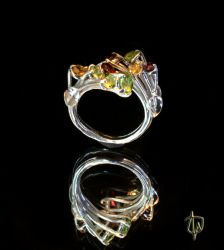 Stardust Ring -perspective  2 by CosmicFolklore