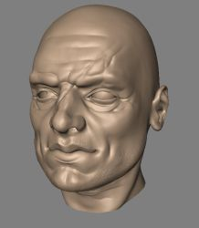 Face sculpt, alternate angle by kordal