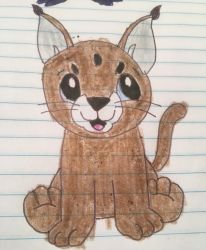 webkinz caracal kitten drawing by lpscat123