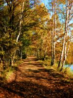 Last autumn memories by Andenne