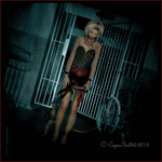The  Asylum by CaperGirl42