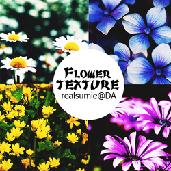 [SHARE] Flower Texture @realsumie by realsumie