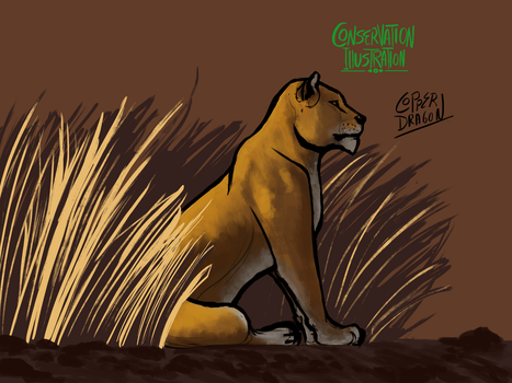 Conservation Illustration Project - Asiatic Lions by copperdragons