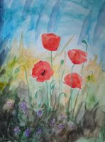 Poppies2 by ConnyDuck
