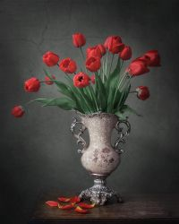 Still life with red tulips by Daykiney