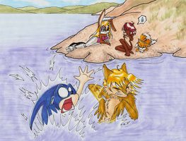 Sonic's Swimming Lessons by Omnicenos