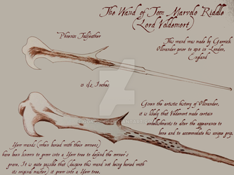 The Wand Of Lord Voldemort  Diagram by gondring