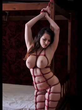Jo Paul Boudoir Trussed Up by SilvanusArt