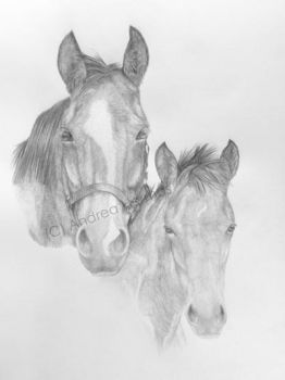 Oldenburger mare with foal by art-lounge