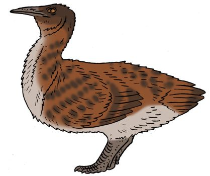 The Lost World Bestiary - Chestnut Tinamou by Pristichampsus