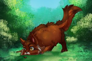 Curious cat by LunnaHowell