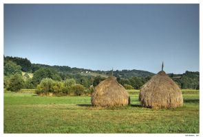 haystack by theartr