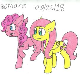Fluttershy and Pinkie by cmara