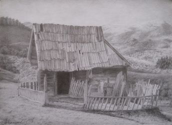 Carpathian House by NaumenkoO