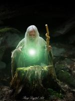 The Wizard by nealbing