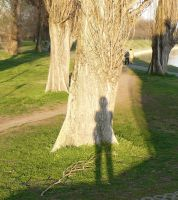 my shadow by andi40