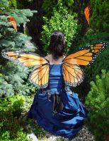 Monarch Fairy Wings by customfairywings