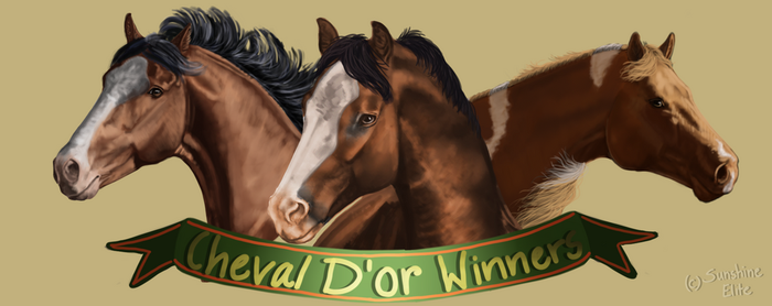 Cheval D'or Results - Winner Headshots by SunshineElite