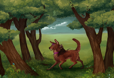 Forest by Susiron