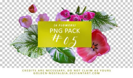 PNG Pack #05 [200 Watchers Pack] by golden-nostalgia
