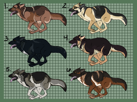 German Shepherd Imports Batch 1 - CLOSED! by 18smiths