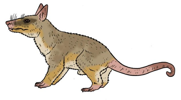 The Lost World Bestiary - Plateau Mouse Opossum by Pristichampsus