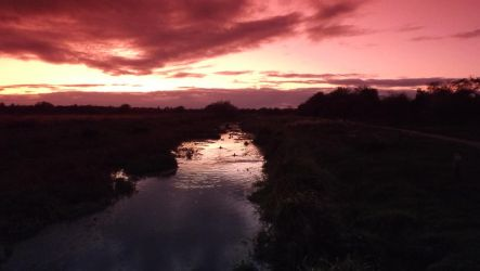 Doxey Marshes Sunset by jebus139