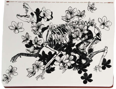 Bones and Flowers by Marbletoast