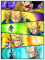 Vegeta Evolution by Hamdoggz