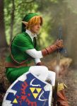 Link- The Boy Without a Fairy by twinfools