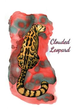 Clouded Leopard by Elica-Prin