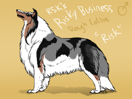 RSK's Risky Business-Risk-Rough Collie by Esaki