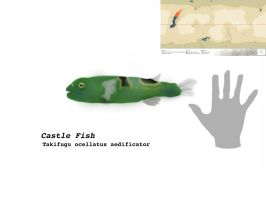 Castlefish  by Midiaou