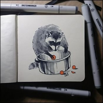 Instaart - Raccoon and oranges by Candra