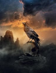 The Raven  king of the crows by abduboxmedia