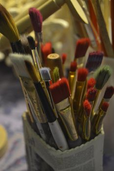 Nikon Paintbrushes by animerockerchick