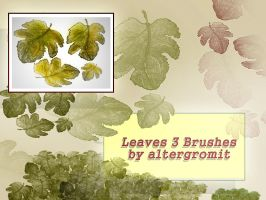 Leaves - 3 Brushes by altergromit