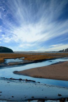 The Mawddach by AndrewCockerill