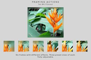 Framing actions - 4 - Filtered by chain