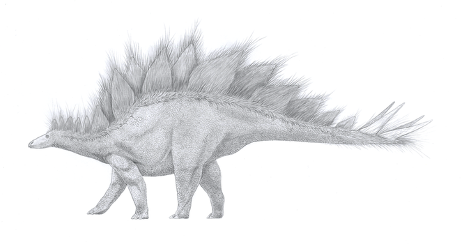 Stegosaurus stenops with speculative integument by GaffaMondo