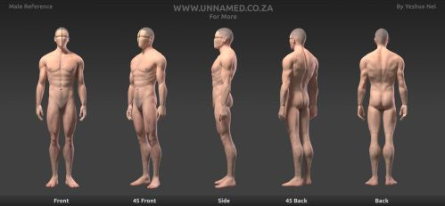 Human Male Reference by YeshuaNel