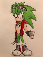 Manic the Hedgehog Redesign by AJ-illustrated