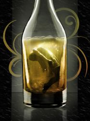 Drowning Bottle Book Cover by blablover5