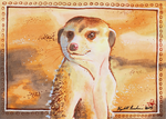On Guard ACEO by Redwall151