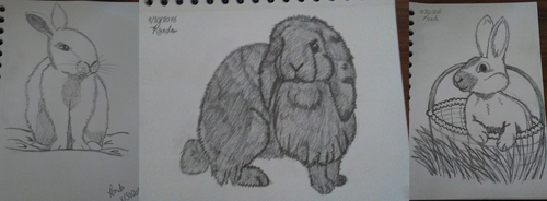 My Second Batch of Bunny Sketches by LadyofHeliodor